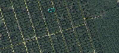 ROCHELSIE ROAD, CRAWFORDVILLE, FL 32327 - Photo 1