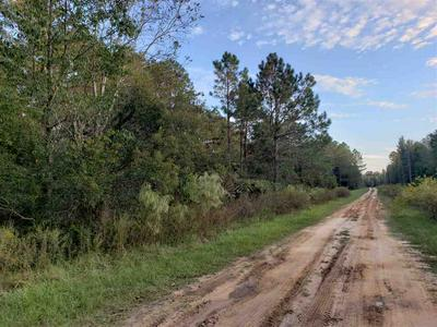 VACANT SE SCARSDALE WAY, LEE, FL 32059 - Photo 2