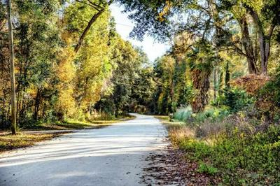 MELODY LANE, CRAWFORDVILLE, FL 32327 - Photo 1