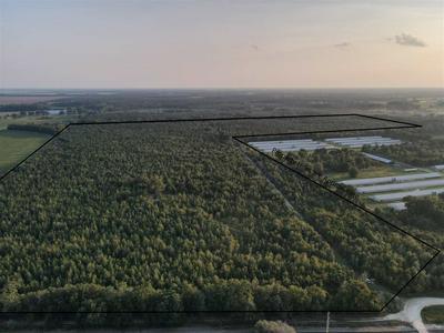 VACANT SE FARM ROAD, LEE, FL 32059 - Photo 1