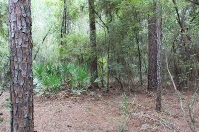 VACANT NE TIMBER RIVER LOOP, LEE, FL 32059 - Photo 2