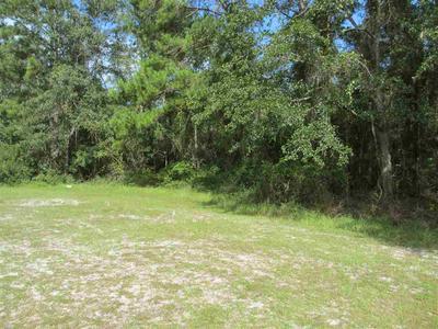 MERIDALE CT, TALLAHASSEE, FL 32305 - Photo 1