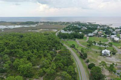 XXX MASHES SANDS ROAD, OCHLOCKONEE BAY, FL 32346 - Photo 1