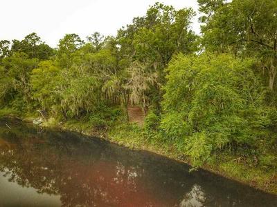 NE CHERVIL DRIVE, LEE, FL 32059 - Photo 1