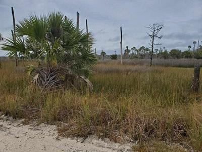 000 REDFISH LN. LANE, PERRY, FL 32348 - Photo 2