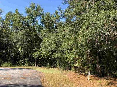 VACANT NE GLORIOSA LANE # 0, LEE, FL 32059 - Photo 2