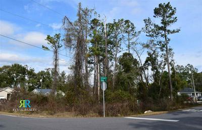 DAN'S DRIVE, CRAWFORDVILLE, FL 32327 - Photo 2