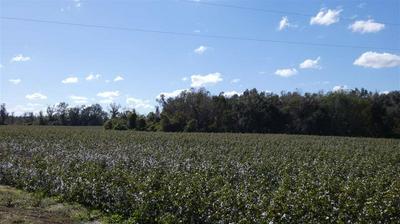 TBD ASHVILLE HIGHWAY, MONTICELLO, FL 32344 - Photo 1