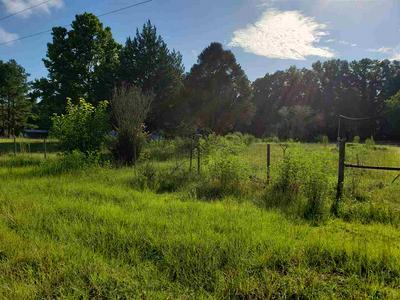 851 SE REMINGTON DR, LEE, FL 32059 - Photo 2