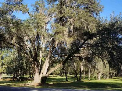 LOT 4 OAKWOOD WAY, Pinetta (Madison County), FL 32350 - Photo 1