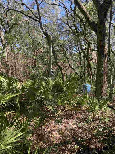 3411 QUAIL ST, PERRY, FL 32348 - Photo 2