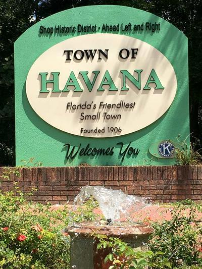 LOT 8-E WISTERIA LANE # 0, HAVANA, FL 32333 - Photo 2