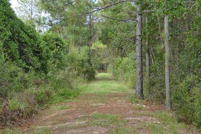XXX SW DELRAY AVENUE, GREENVILLE, FL 32331 - Photo 1