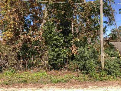 38 CHINOOK TRL, CRAWFORDVILLE, FL 32327 - Photo 1