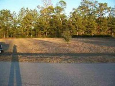 LOT 21 TWIN OAKS DRIVE, BRISTOL, FL 32321 - Photo 1