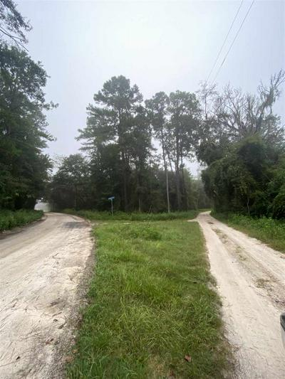 VACAT NE CASSIA DRIVE, LEE, FL 32059 - Photo 1