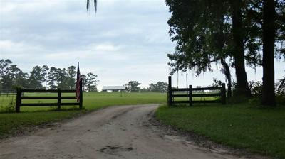 250 PAINTED PONY TRL, MONTICELLO, FL 32344 - Photo 1