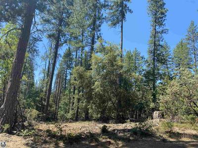 307 RIDGE RD., Rail Road Flat, CA 95248 - Photo 2