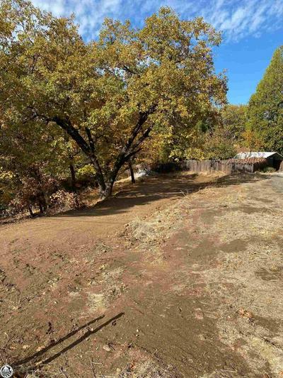 21330 RIDGEVIEW DR, Sonora, CA 95370 - Photo 2