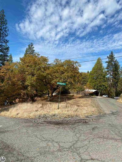21330 RIDGEVIEW DR, Sonora, CA 95370 - Photo 1