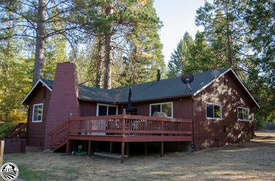 6791 DOGTOWN RD, Coulterville, CA 95311 - Photo 2