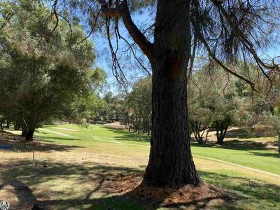 12719 MUELLER DR # 267, Groveland, CA 95321 - Photo 1