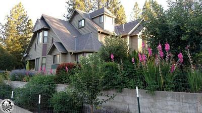 20955 WHITES GULCH RD, GROVELAND, CA 95321 - Photo 1