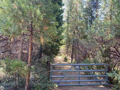 307 RIDGE RD., Rail Road Flat, CA 95248 - Photo 1