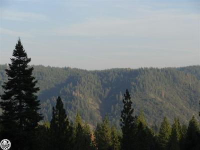 25072 TOBAN WAY, Sierra Village, CA 95346 - Photo 2