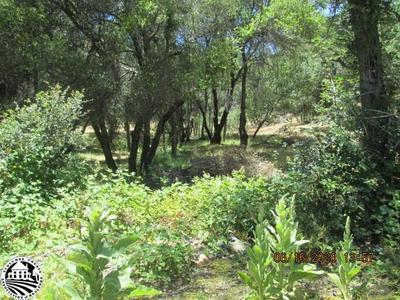 FLINT COURT, Groveland, CA 95321 - Photo 1