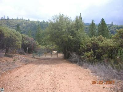 LOT 15, Twain Harte, CA 95383 - Photo 1
