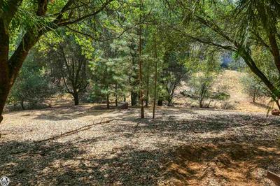 UNIT 4, Groveland, CA 95321 - Photo 2