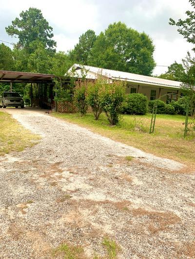 1018 STATE HIGHWAY 147, Zavalla, TX 75980 - Photo 2