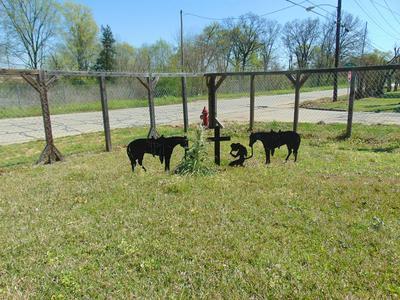 601 N NEIL PICKETT DR, DIBOLL, TX 75941 - Photo 1