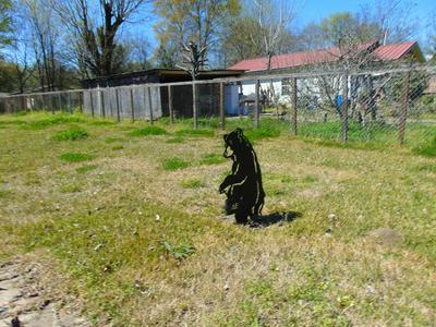 601 N NEIL PICKETT DR, DIBOLL, TX 75941 - Photo 2