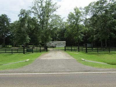 24111 FM 2262, Apple Springs, TX 75926 - Photo 1