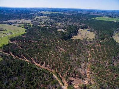 136 AC FENLEY FLAT ROAD, Pollok, TX 75969 - Photo 1
