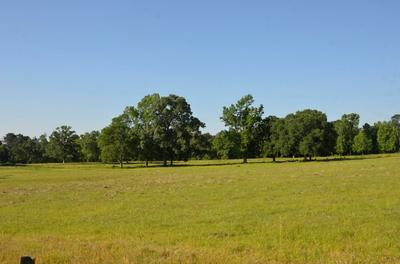 3755 W STATE HIGHWAY 7, Pollok, TX 75969 - Photo 2