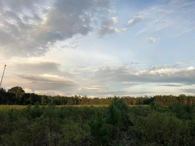 0 FM 2501, Apple Springs, TX 75926 - Photo 1