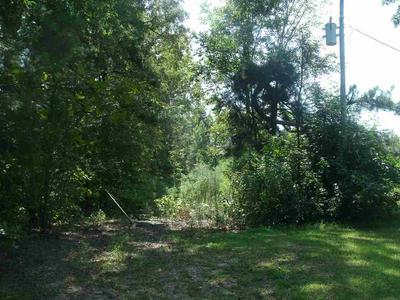 30 +/- ACRES MC 211, Fouke, AR 71837 - Photo 1