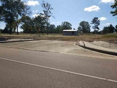 30.37 ACRES I-30 S & MOCKINGBIRD, Hooks, TX 75561 - Photo 1