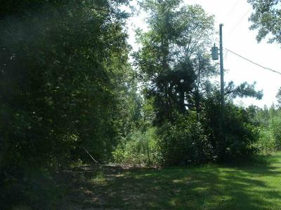 30 +/- ACRES MC 211, Fouke, AR 71837 - Photo 2