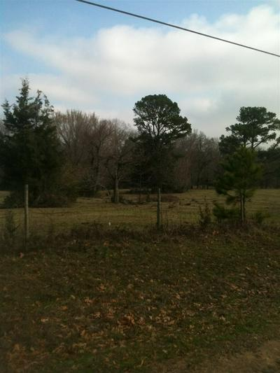 0 COUNTY ROAD 1214, REDWATER, TX 75573 - Photo 2