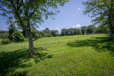 TBD FOREST AVENUE, Church Hill, TN 37642 - Photo 2