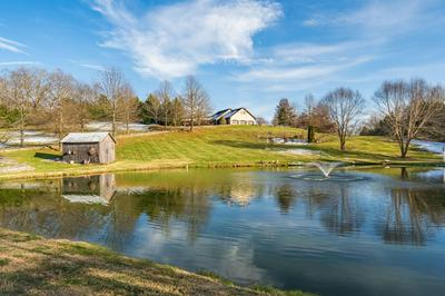 736 GLENDALE RD, Jonesborough, TN 37659 - Photo 2