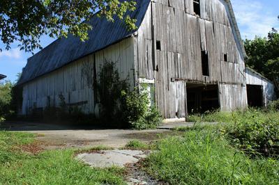 TBD CEDAR CREEK ROAD, Meadowview, VA 24361 - Photo 2