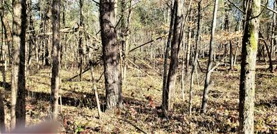 00 DEAN ROAD, Mooresburg, TN 37811 - Photo 1
