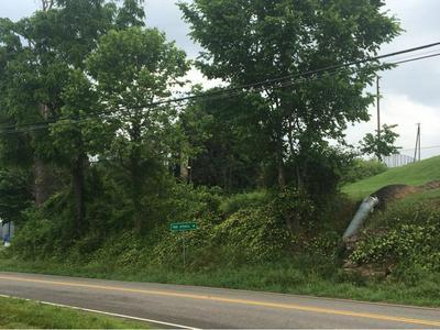 TBD TWIN SPRINGS ROAD, Nickelsville, VA 24271 - Photo 2