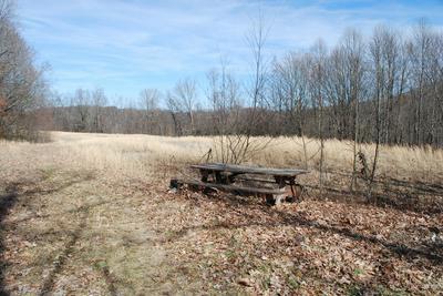 10591 PINE CAMP RD, Coeburn, VA 24230 - Photo 1