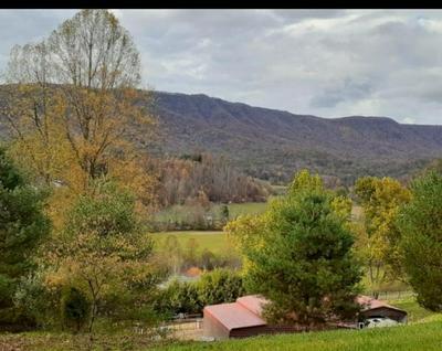 437 SINK VALLEY RD, Butler, TN 37640 - Photo 1
